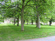 Park - kulturní památka